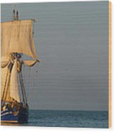 Two Ships Sailing To Port Wood Print