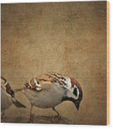 Two Sparrows Wood Print