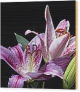 Two Star Lilies Wood Print