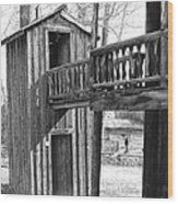 Two-story Privy Wood Print