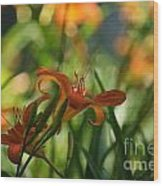 Two Tiger Lillies...   # Wood Print
