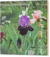 Two Tone Iris Wood Print