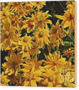 Two Toned Yellow Blooms Wood Print