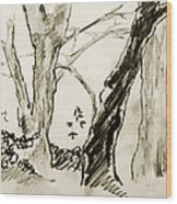 Two Tree Drawing Wood Print