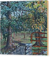 Two Trees And A Gate Wood Print
