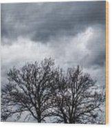 Two Trees Beneath A Dark Cloudy Sky Wood Print