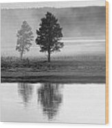 Two Trees Wood Print