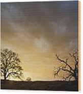 Two Trees Greeting The Sun Wood Print