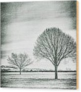 Two Trees In A Field Wood Print