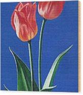 Two Tulips Wood Print