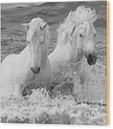 Two White Horses in the Waves Wood Print