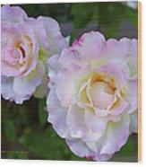 Two White Roses Border Wood Print