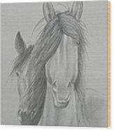 Two Wild Horses Wood Print