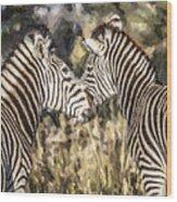 Two Zebras Equus Quagga Nuzzlling Wood Print