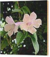Twosome Bloom Wood Print