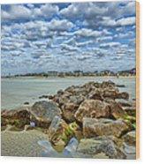 Tybee Beach Wood Print