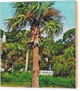Tybee Palm Wood Print