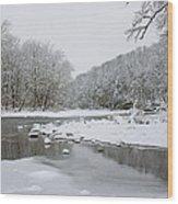 Tyler Park In Winter Wood Print