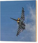 Typhoon Jet Wood Print