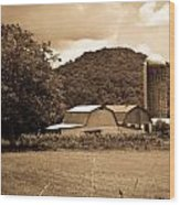 Typical Farm Place 1 Wood Print