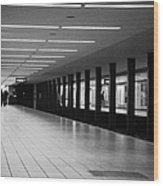 u-bahn platform and station Berlin Germany Wood Print by Joe Fox