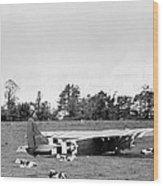 U. S. Air Force Glider That Landed Wood Print