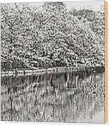 Ueno Park Sakuara Wood Print