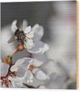 Ugly Pollinator Wood Print