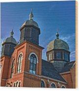 Ukranian Orthodox Church 20049 Wood Print