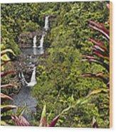 Umauma Falls Wood Print