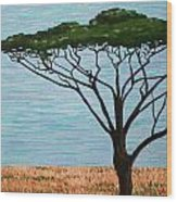Umbrella Tree Wood Print
