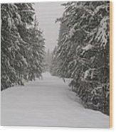 Unbroken Trail Wood Print