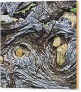 Under Roots Of Dead Tree Wood Print by Linda Phelps