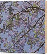 Under The Jacaranda Tree Wood Print