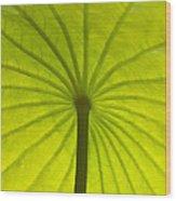 Under The Leaf Wood Print