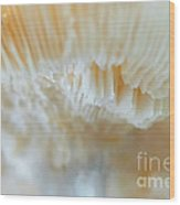 Under The Mushroom Wood Print