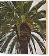 Under The Palm II Wood Print