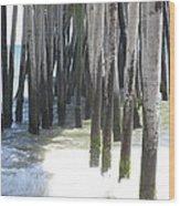 Under The Pier Wood Print