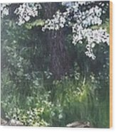 Under The Shade Of The Almond Blossom Wood Print