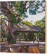 Under The Shadow Of The Tree. Eureka. Mauritius Wood Print