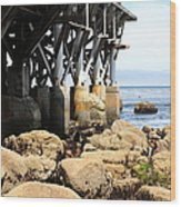 Under The Steinbeck Plaza Overlooking Monterey Bay On Monterey Cannery Row California 5d25050 Wood Print