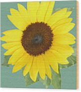 Under The Sunflower's Spell Wood Print