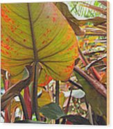 Under The Tropical Leaves Wood Print