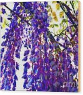 Under The Wisteria Wood Print