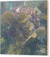 Underwater Colors Wood Print by Adam Jewell