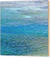 Underwater Colors Wood Print