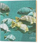 Underwater Fish Swimming By Wood Print