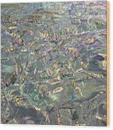 Underwater - Long Boat Tour - Phi Phi Island - 011326 Wood Print