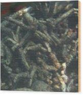 Underwater - Long Boat Tour - Phi Phi Island - 011341 Wood Print