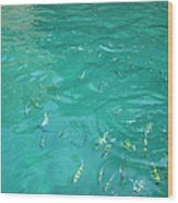 Underwater - Long Boat Tour - Phi Phi Island - 01136 Wood Print by DC Photographer
